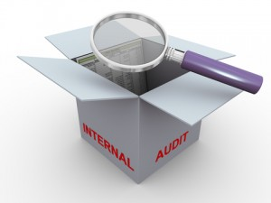 Internal Audit Software Nigeria