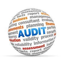 Audit Management Software Nigeria